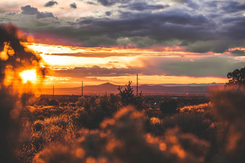 Jordan Scrapes Secretary of States: New Mexico